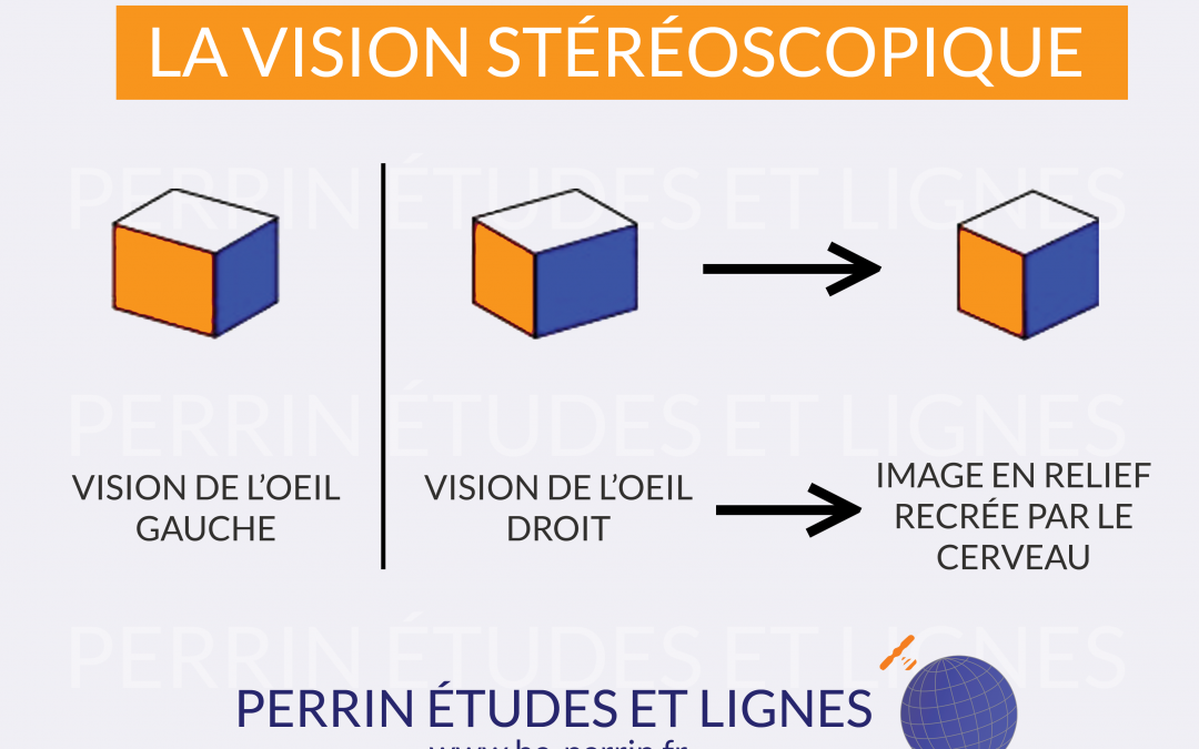Qu'est-ce que la vision stéréoscopique ?